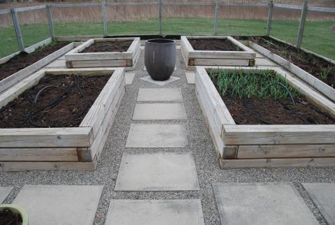 Raised beds and smooth pathways, for accessible gardening